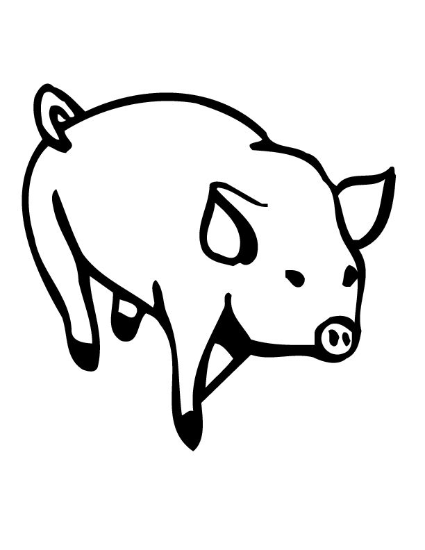 Pig Coloring Pages Photos