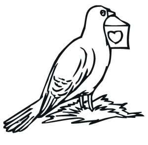 Pigeon coloring pages to print 001