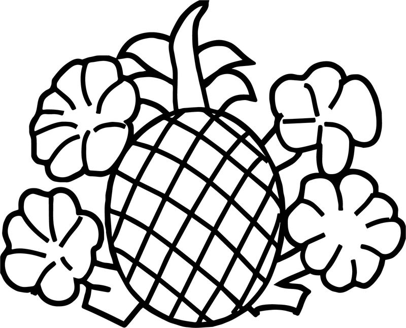 Pineapple With Flowers Coloring Page