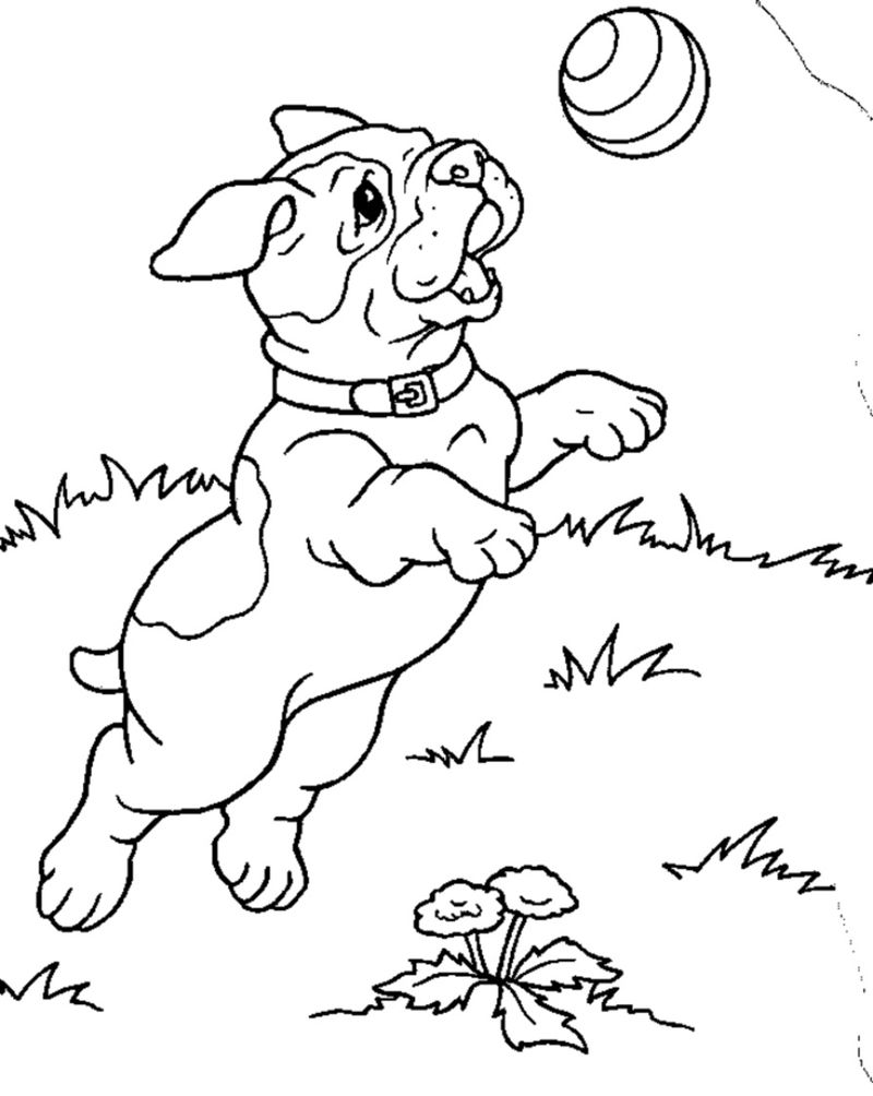 Playing Ball Dog Coloring Pages