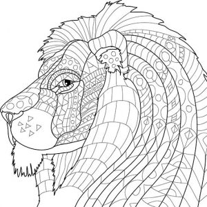 Printable animal coloring pages for adults 001