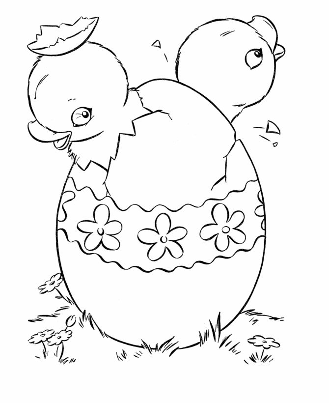 Printable Chick Coloring Page