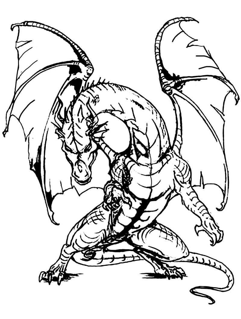 Printable Dragon Picture Adult Coloring