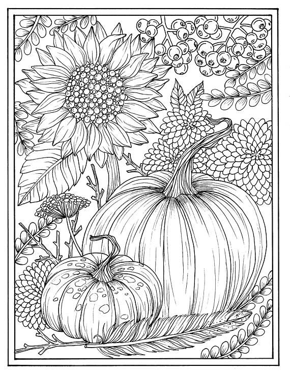 Printable Pumpkin Pictures Coloring Adults