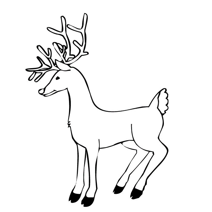 Printable Reindeer Coloring Pages For Kids