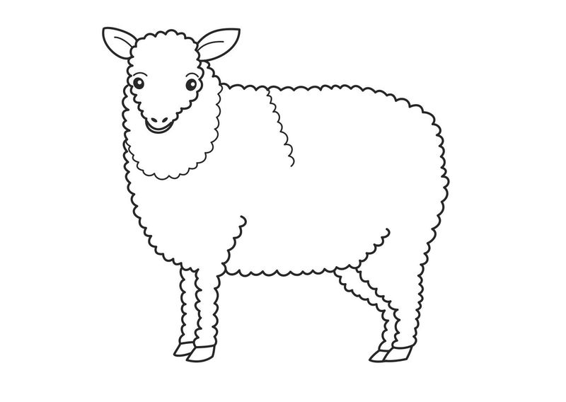 Printable Sheep Coloring Pages For Kids