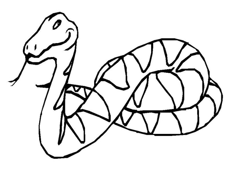 Printable Snake Coloring Pages For Kids