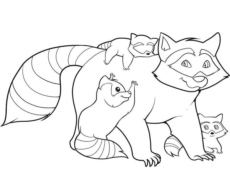 Raccoon Coloring Pages For Kids