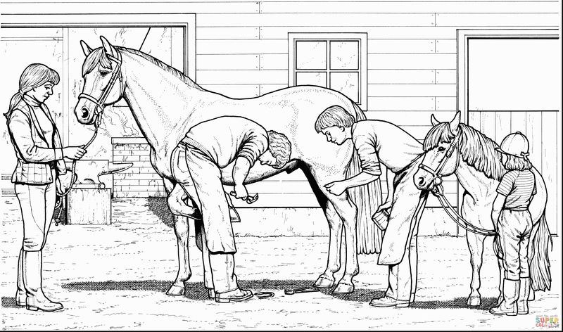 Realistic Horse Work Coloring Page