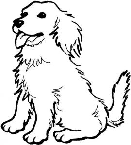 Retriever dog coloring pages