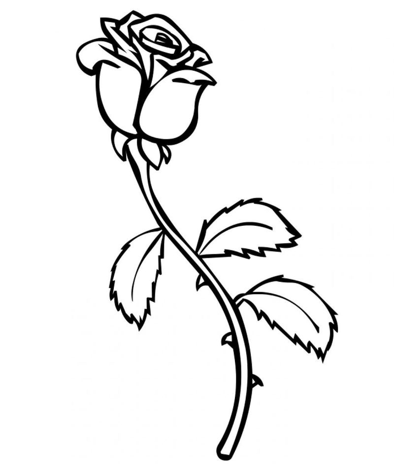 Rose Coloring Pages For Kids 001