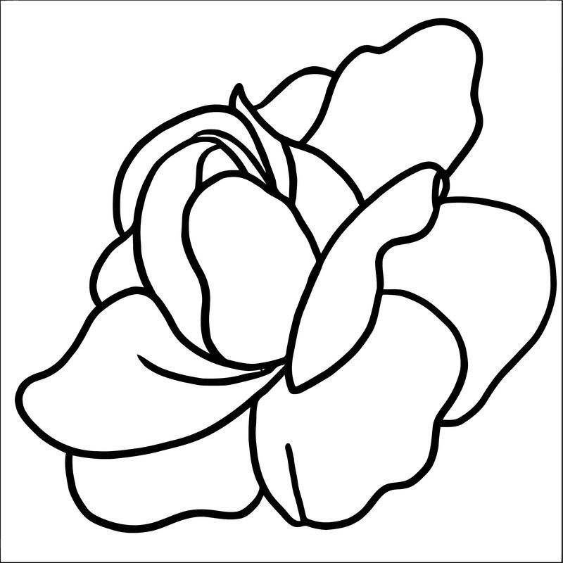 Rose Flower Coloring Page 010