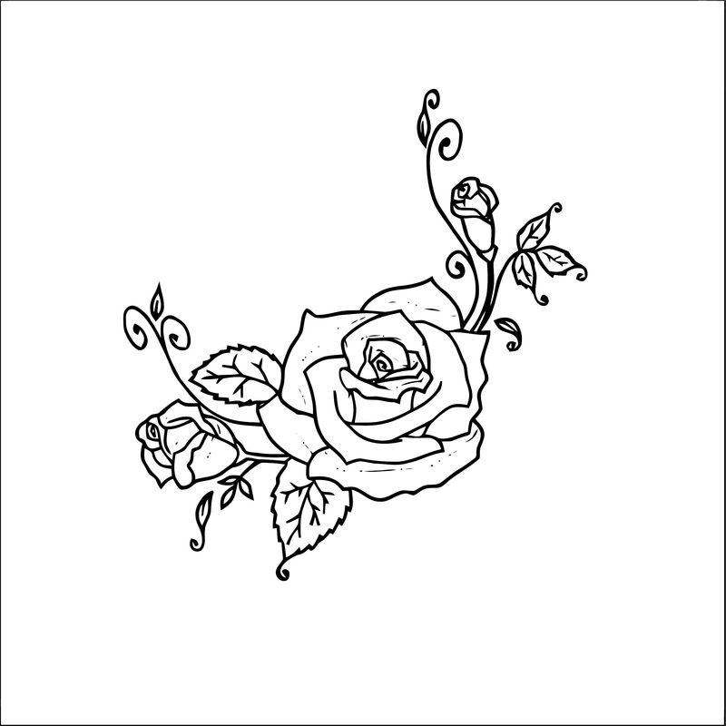 Rose Flower Coloring Page 036