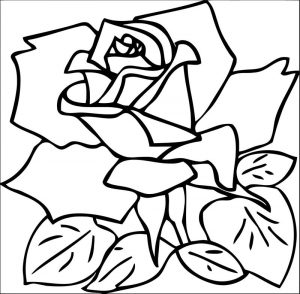 Rose flower coloring page 100