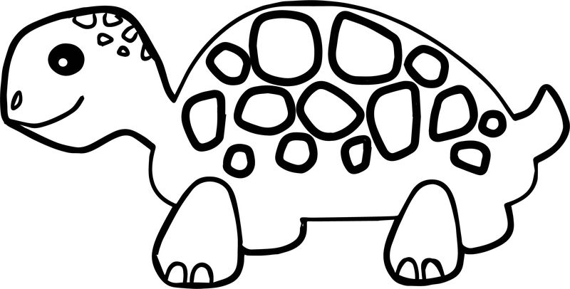 Rotten Tortoise Turtle Coloring Page