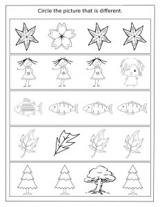 Same and different worksheets activity