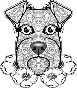 Schnauzer dog coloring pages for adults