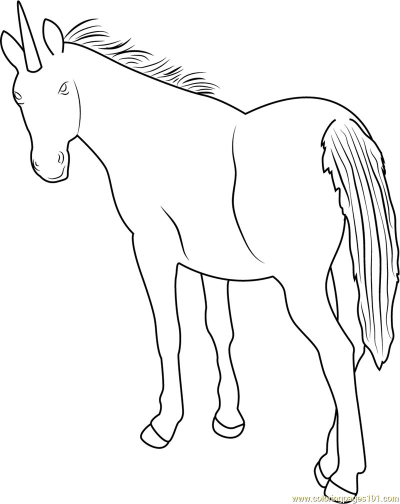 Simple Unicorn Coloring Page