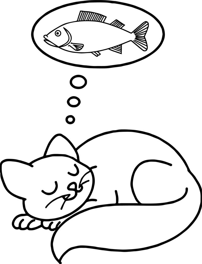 Sleep Fish Dream Cat Coloring Page