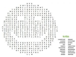 Smiley word search printables for kids