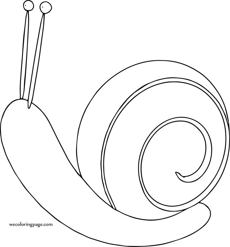 Snail Cartoon Coloring Page