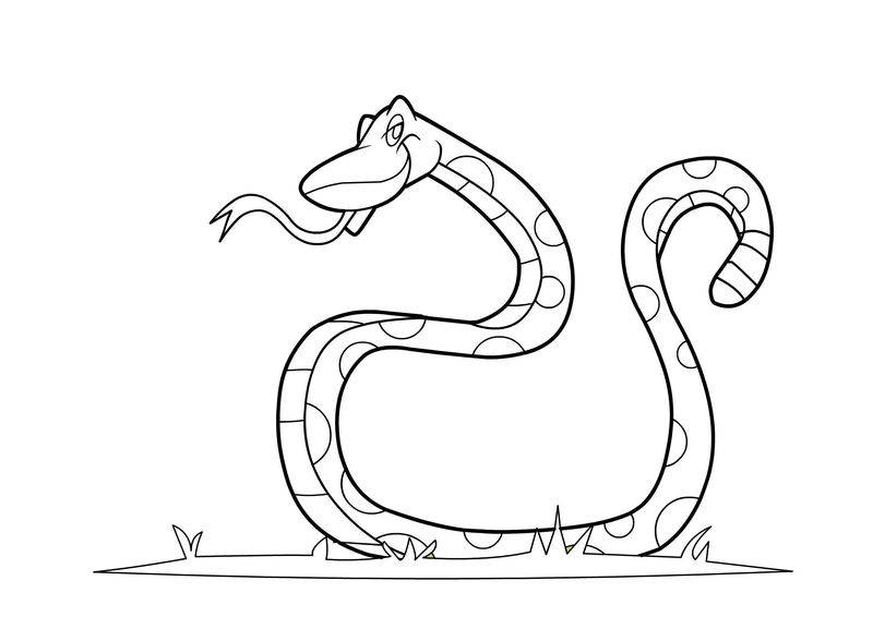 Snake Coloring Pages Kids
