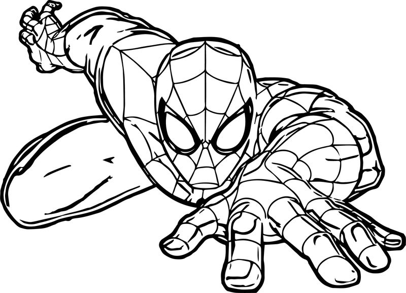 Spiderman Crawl Spider Man Coloring Page