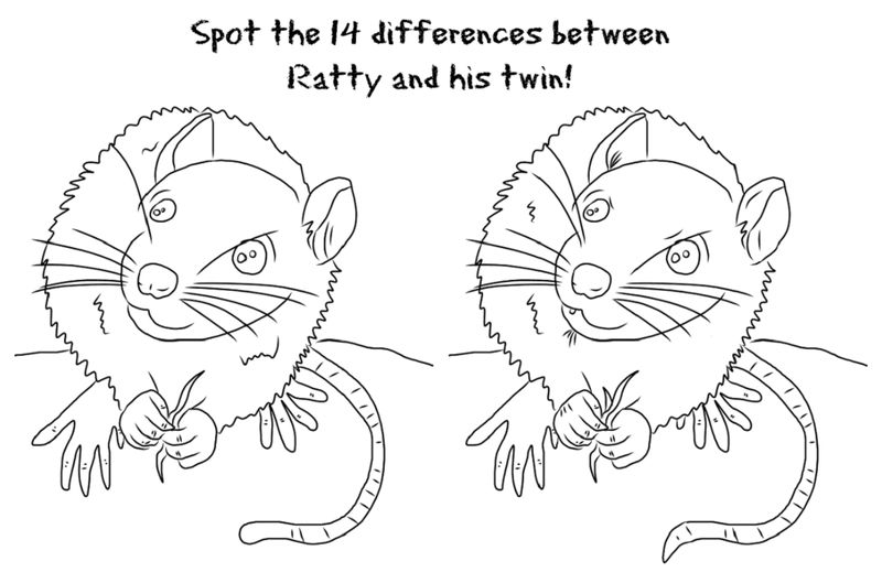 Spot The Difference Worksheets Mouse