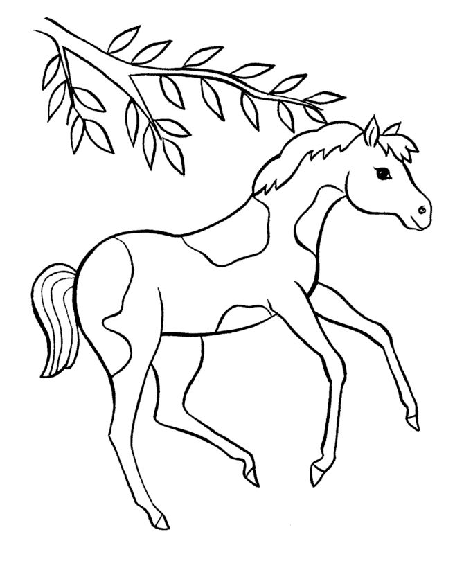 Spotted Pony Coloring Pages