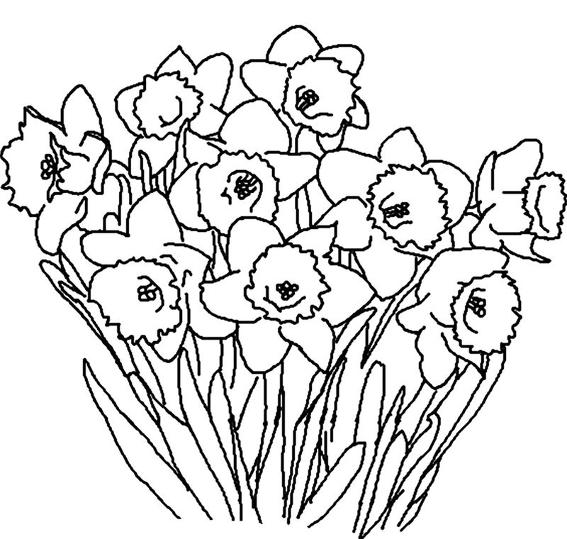 Spring Flower Coloring Pages For Adults