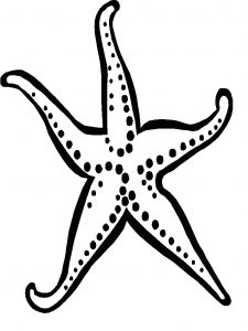 Star fish coloring pages