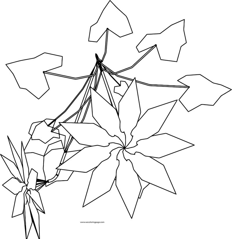 Stardaisy Flower Coloring Page