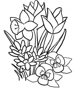 Summer flowers coloring pages
