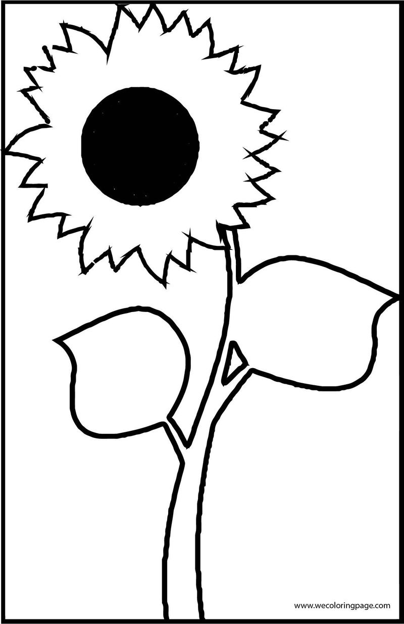 Sunflower 4 Coloring Page