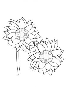 Sunflower coloring pages printable 001