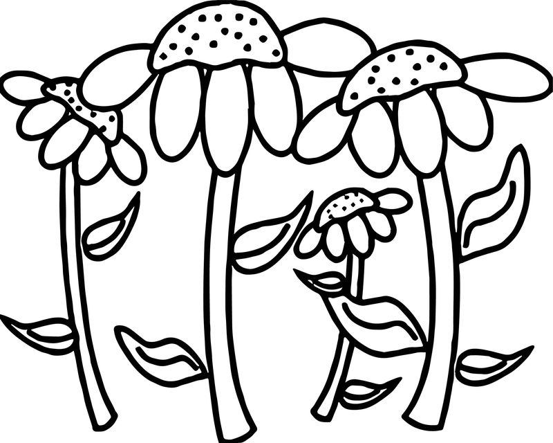 Susan Flowers In A Flower Garden Coloring Page