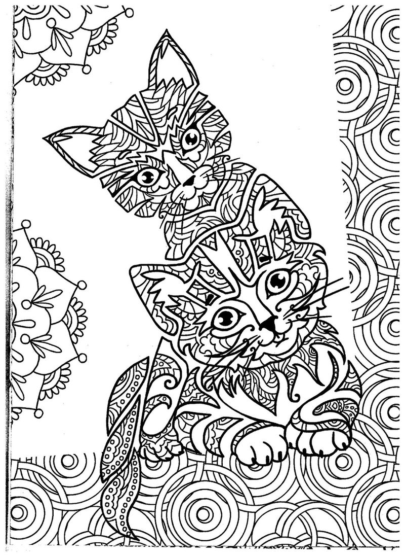 Sweet Zen Kittens Adult Coloring