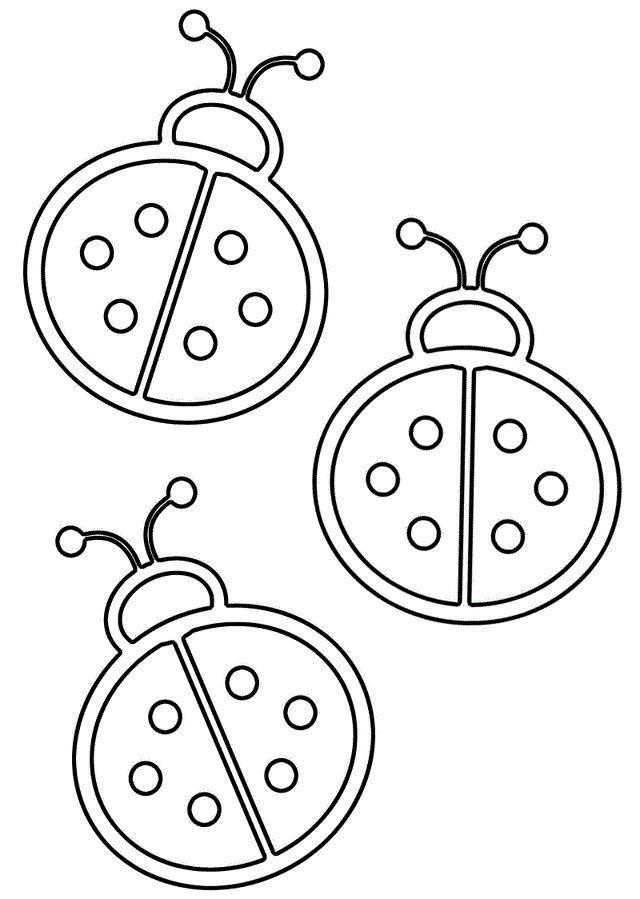 Templates For Kids To Color Bugs 001