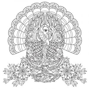 Thanksgiving turkey adult coloring page
