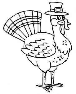 Thanksgiving turkey in pilgrim hat coloring page