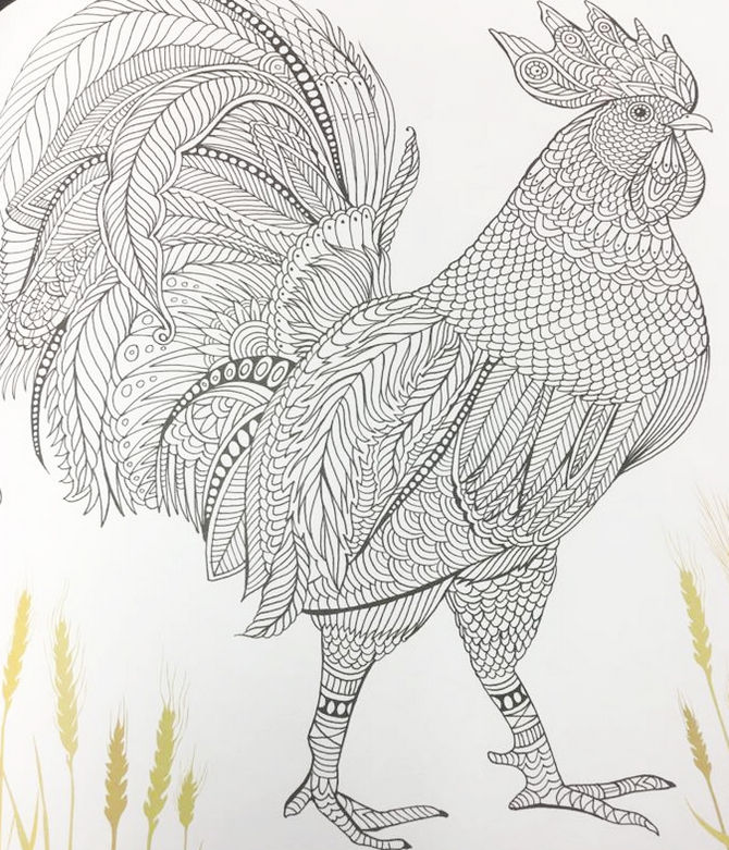 The Aviary Bird Portraits Coloring Book Chicken