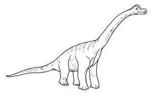The tallest and largest dinosaurs brachiosaurus coloring picture