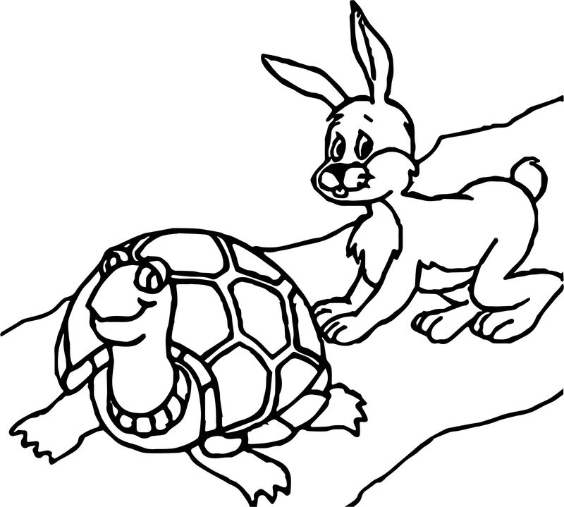 Tortoise Turtle Bunny Coloring Page