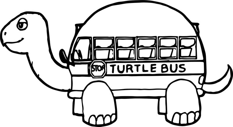Tortoise Turtle Bus Coloring Page