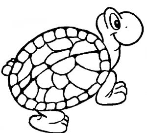 Tortoise turtle coloring page 228