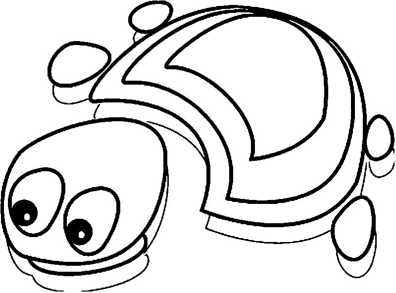 Tortoise Turtle In River Coloring Page