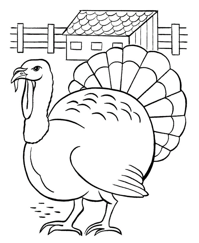 Turkey Printable Coloring Pages