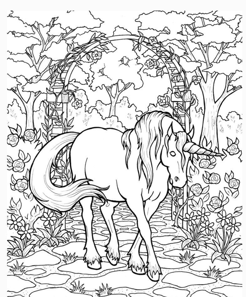 Unicorn In The Garden Adult Coloring Page