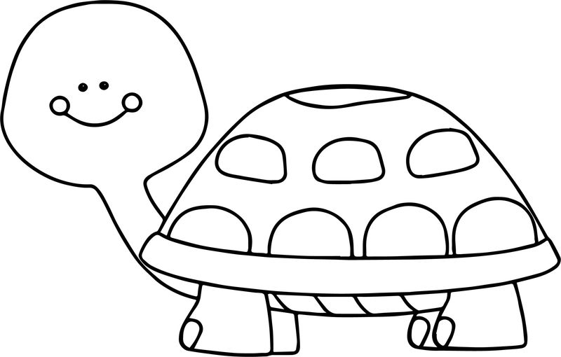Very Funny Tortoise Turtle Coloring Page