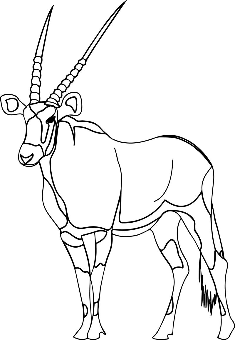 Walking Antelope Coloring Page